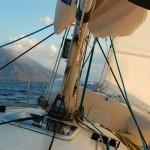 Gatto Mammone (campagna Verde come Vela) in arrivo a Stromboli