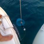 Su Diana si sperimentano invece tecniche di pesca innovative: bugliolo e mozzarella